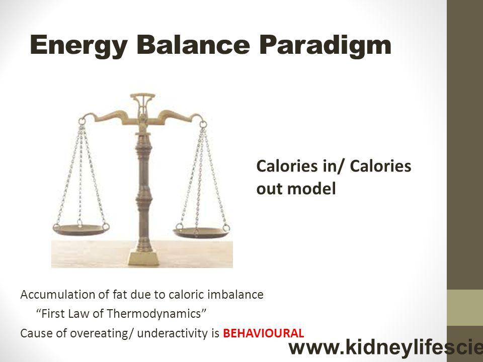 Energy Balance Paradigm