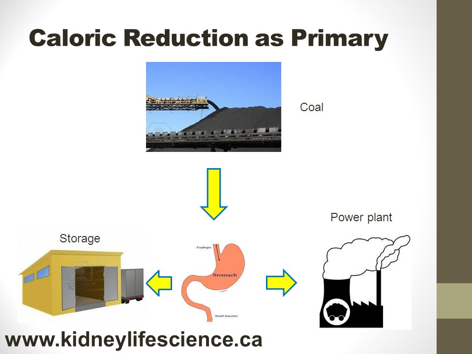 Caloric Reduction as Primary