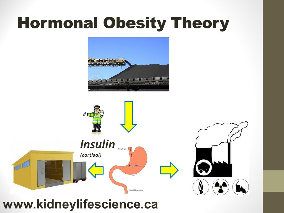 Hormonal Obesity Theory