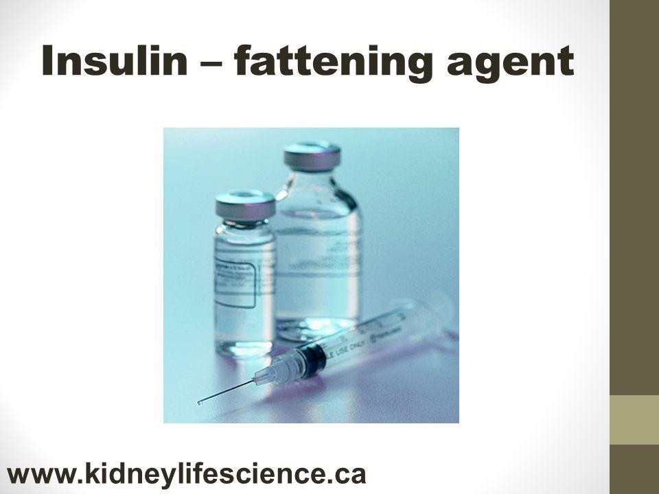 Insulin – fattening agent