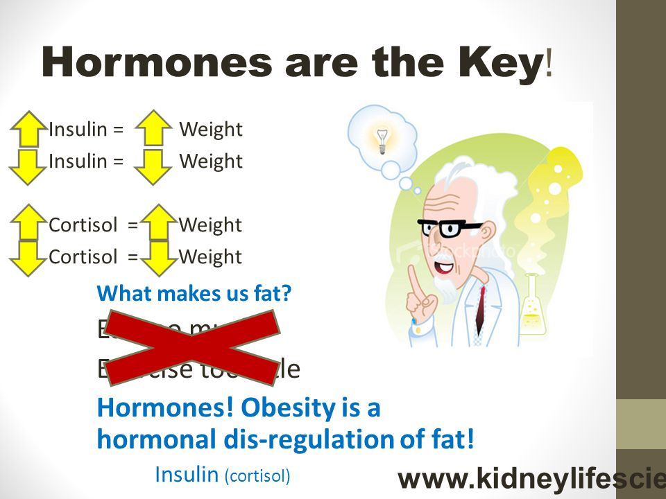Hormones are the Key! Eat too much Exercise too little