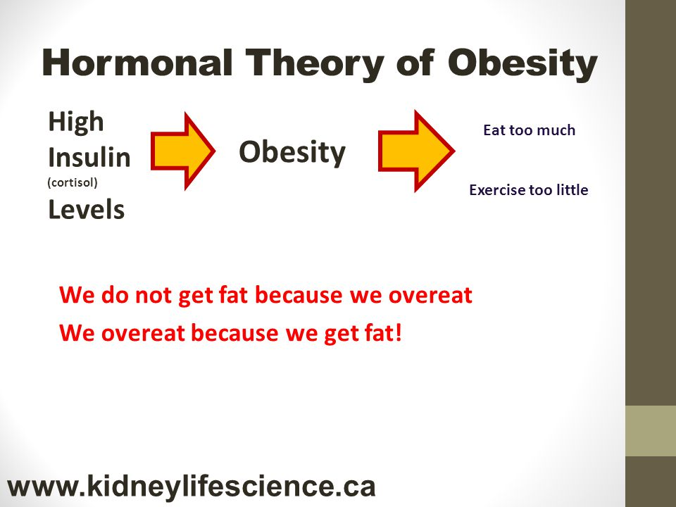 Hormonal Theory of Obesity