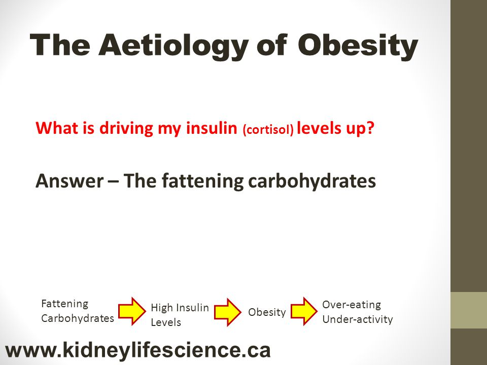 The Aetiology of Obesity