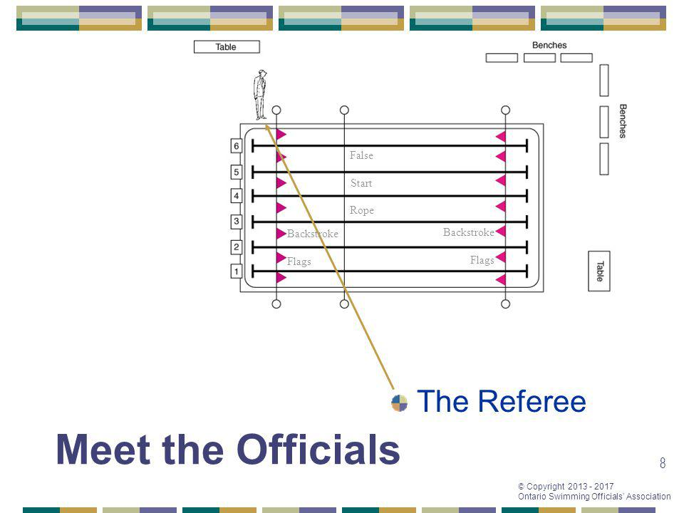 Meet the Officials The Referee False Start Rope Backstroke Backstroke