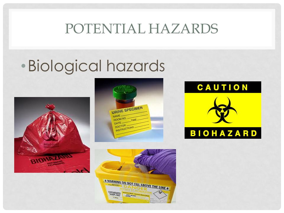 Potential hazards Biological hazards