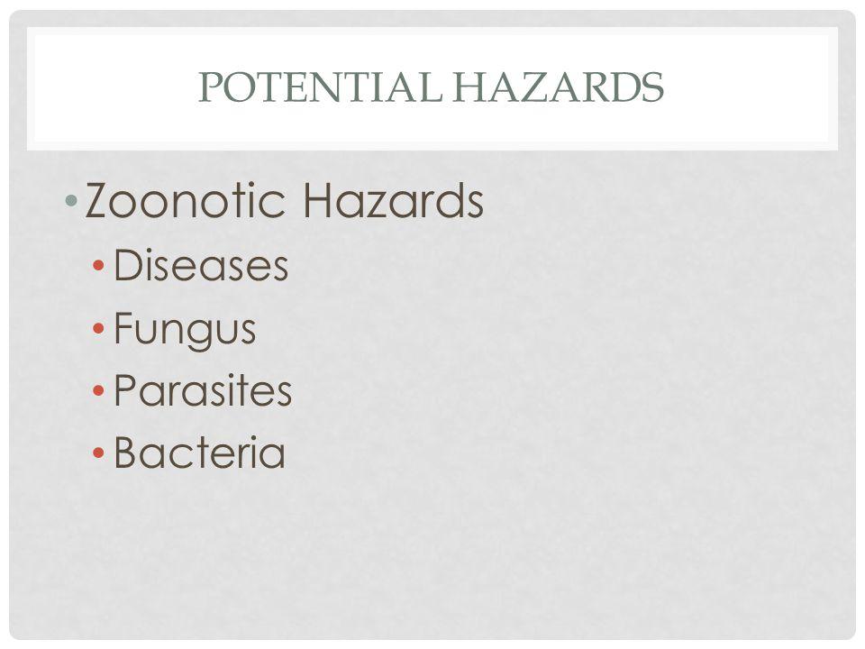 Potential hazards Zoonotic Hazards Diseases Fungus Parasites Bacteria