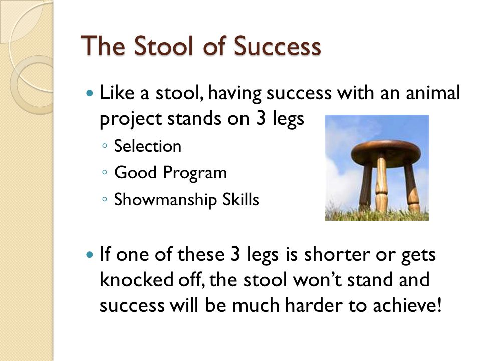 The Stool of Success Like a stool, having success with an animal project stands on 3 legs. Selection.