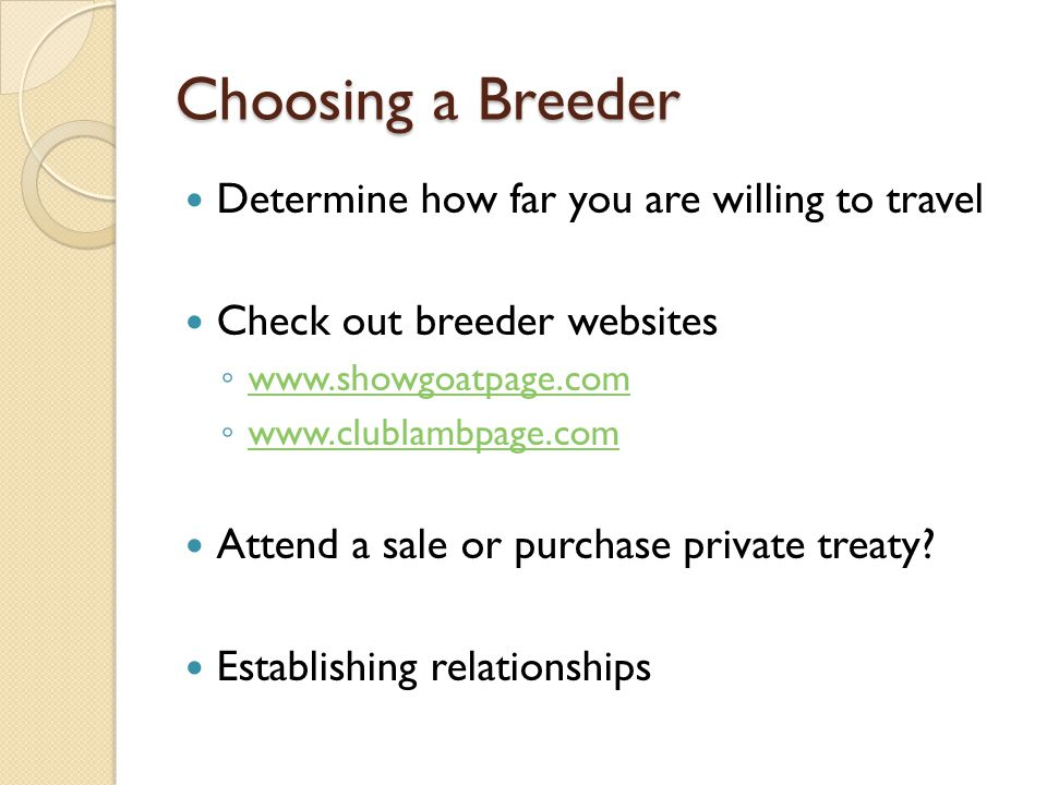 Choosing a Breeder Determine how far you are willing to travel