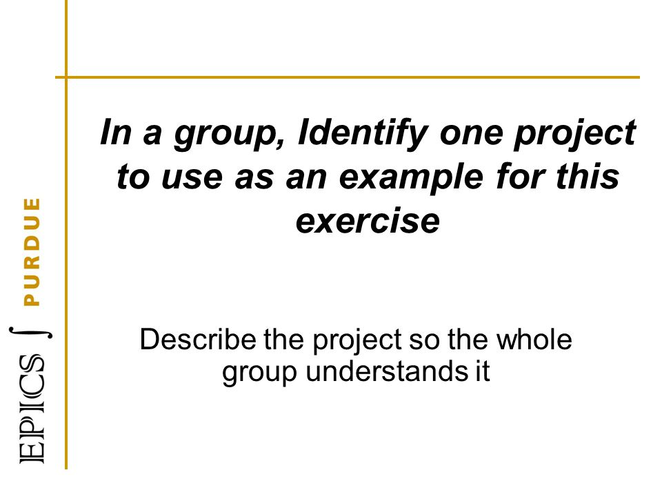 Describe the project so the whole group understands it