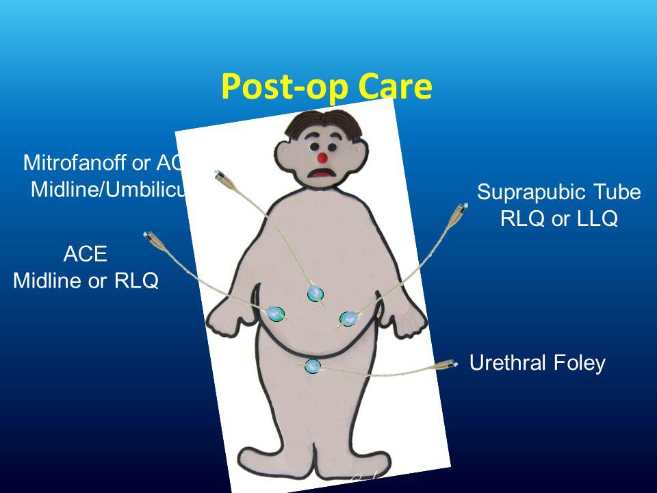 Post-op Care Mitrofanoff or ACE Midline/Umbilicus Suprapubic Tube