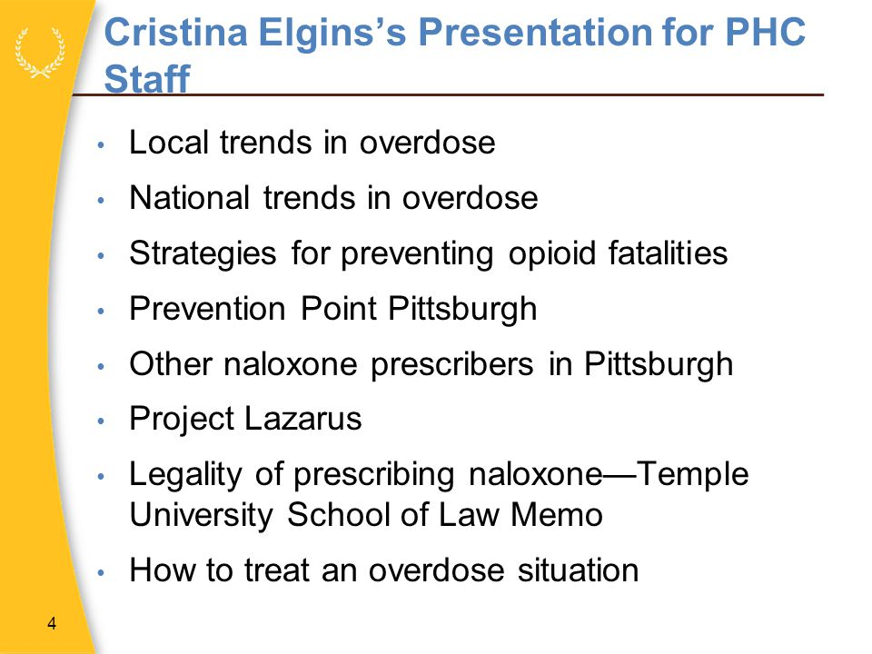 Cristina Elgins's Presentation for PHC Staff
