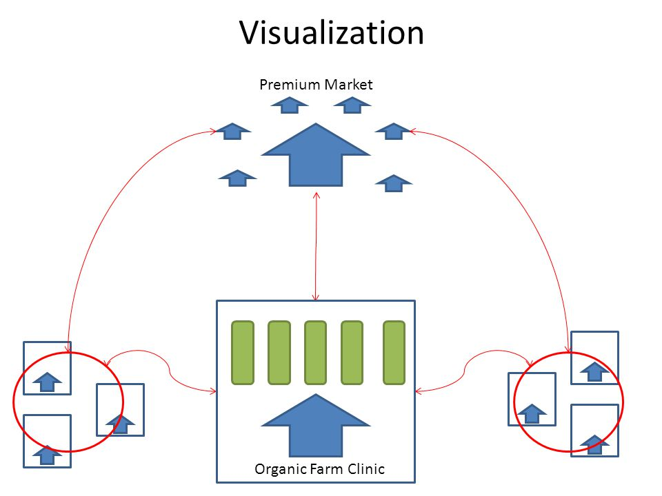 Visualization Premium Market Organic Farm Clinic