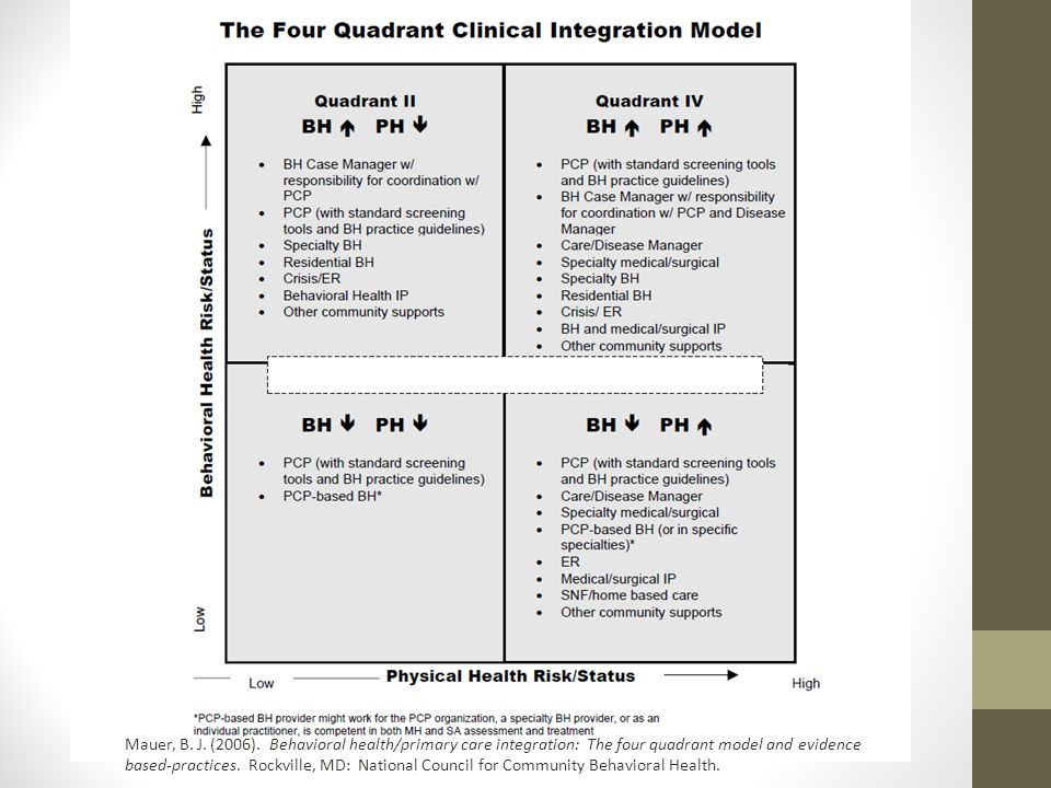 Mauer, B. J. (2006). Behavioral health/primary care integration: The four quadrant model and evidence