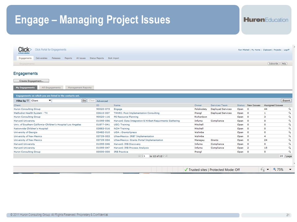 Engage – Managing Project Issues