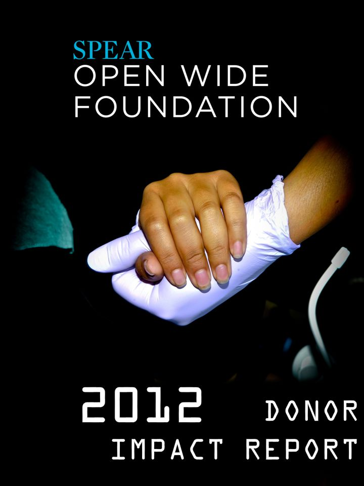 DONOR IMPACT REPORT 2012