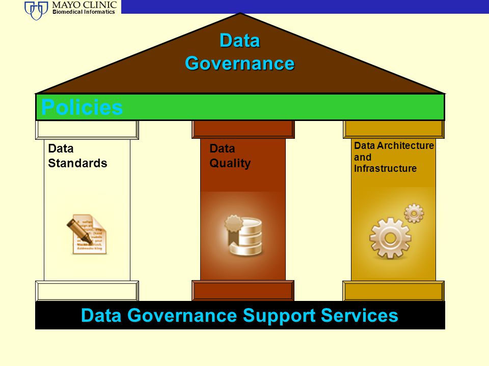Data Governance Support Services
