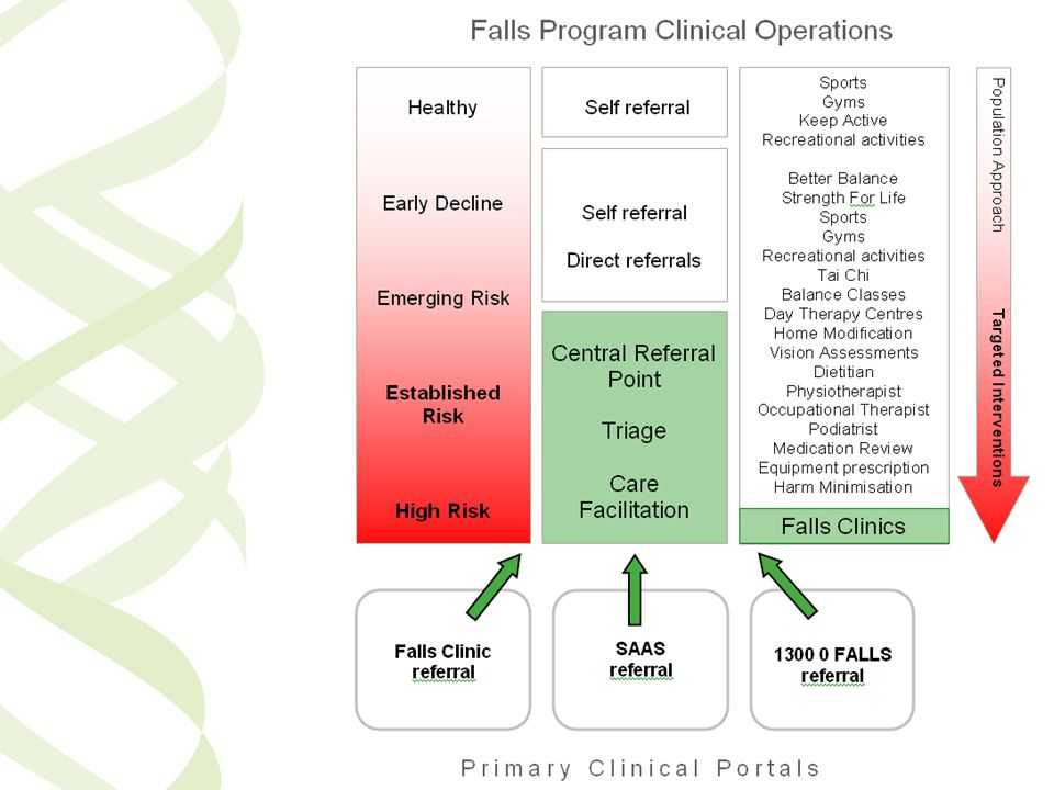If we imagined the Falls Program Clinical Operations to look like this
