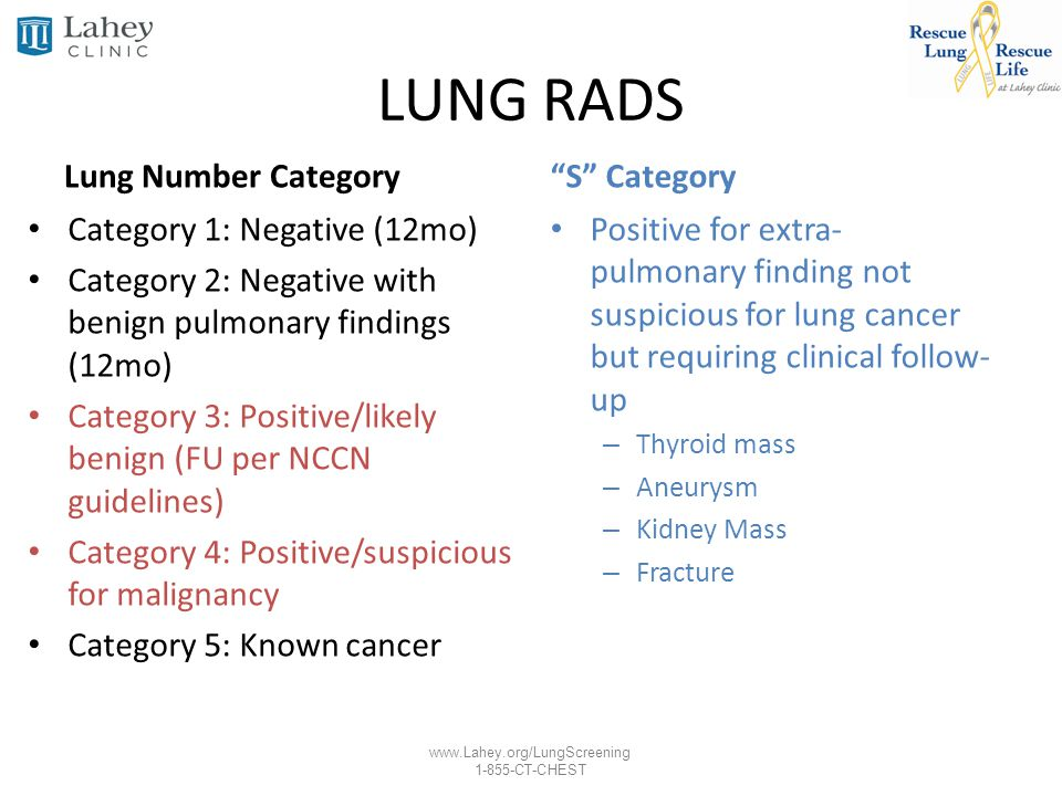 LUNG RADS Lung Number Category S Category