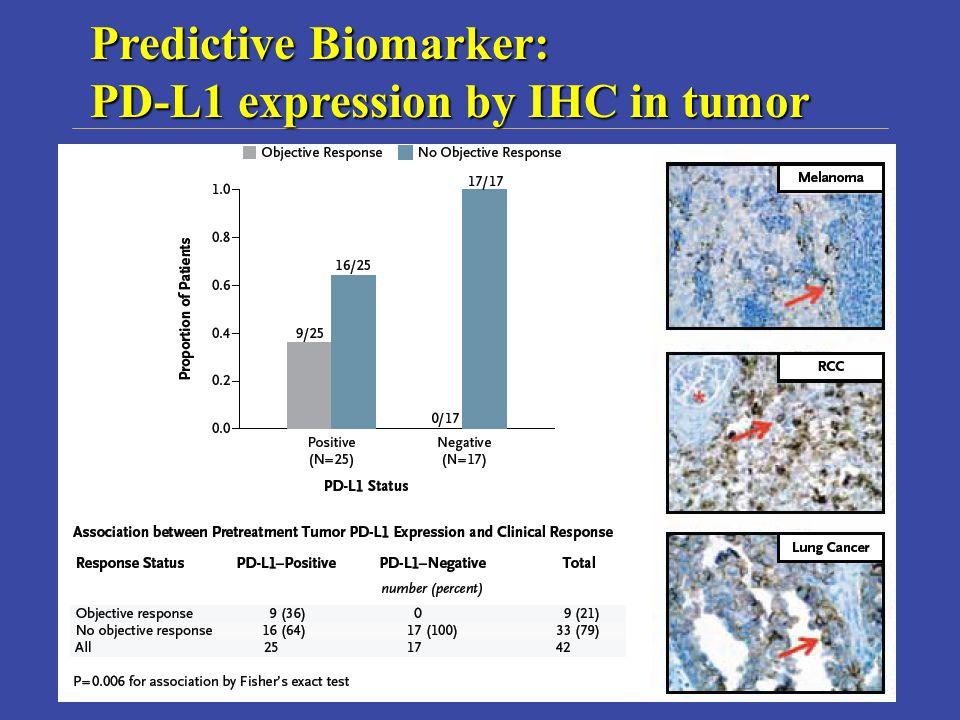 Predictive Biomarker: