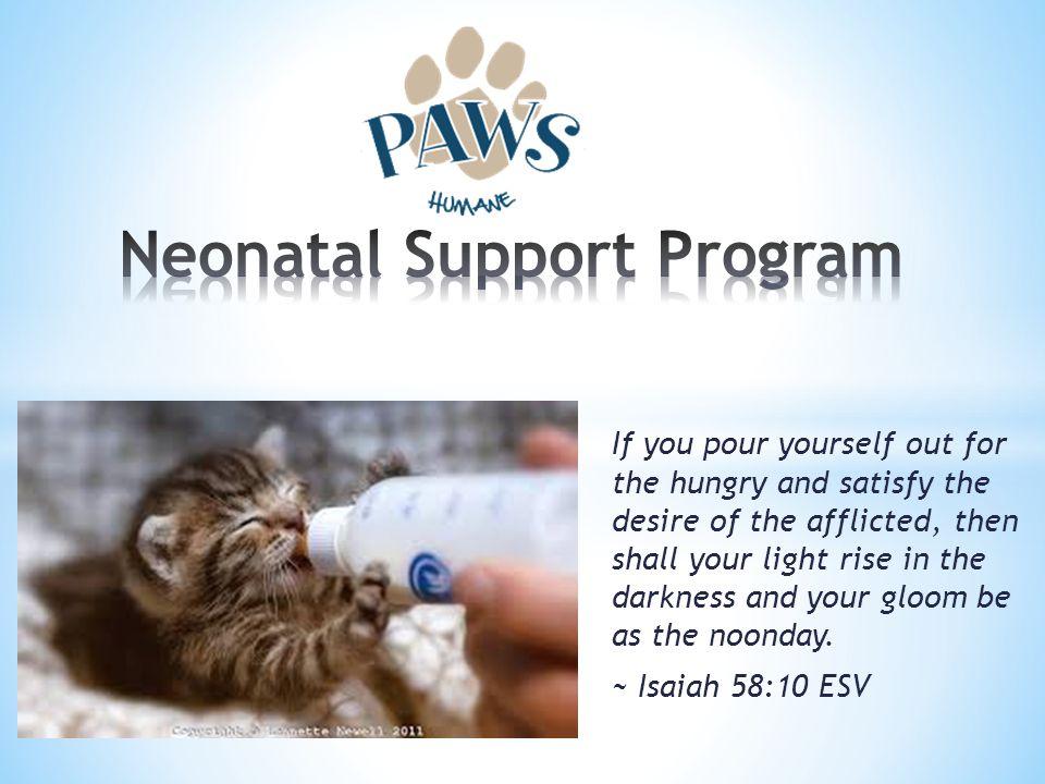 Neonatal Support Program