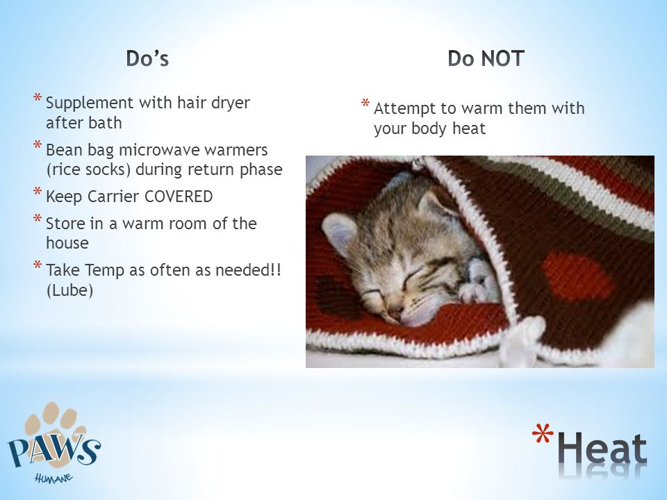 Heat Do's Do NOT Supplement with hair dryer after bath