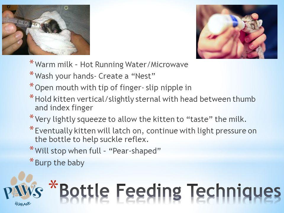 Bottle Feeding Techniques