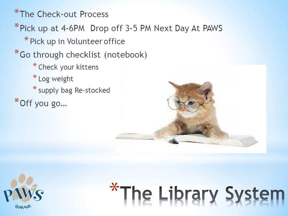 The Library System The Check-out Process