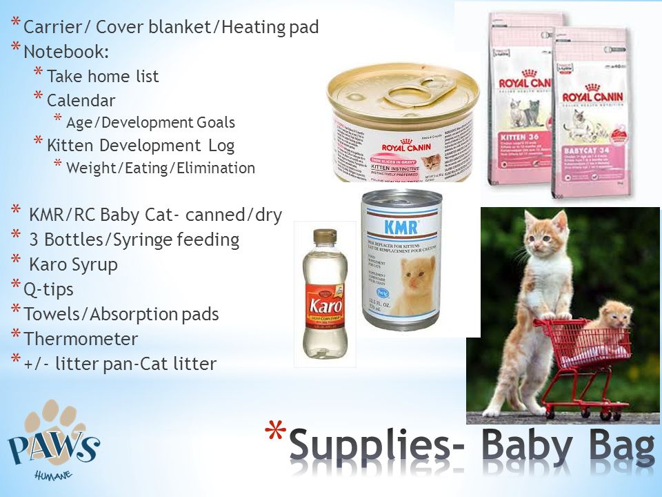 Supplies- Baby Bag Carrier/ Cover blanket/Heating pad Notebook: