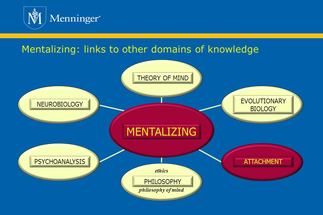 Mentalizing: links to other domains of knowledge