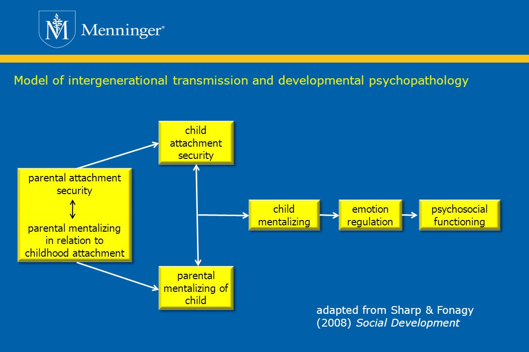 Model of intergenerational transmission and developmental psychopathology