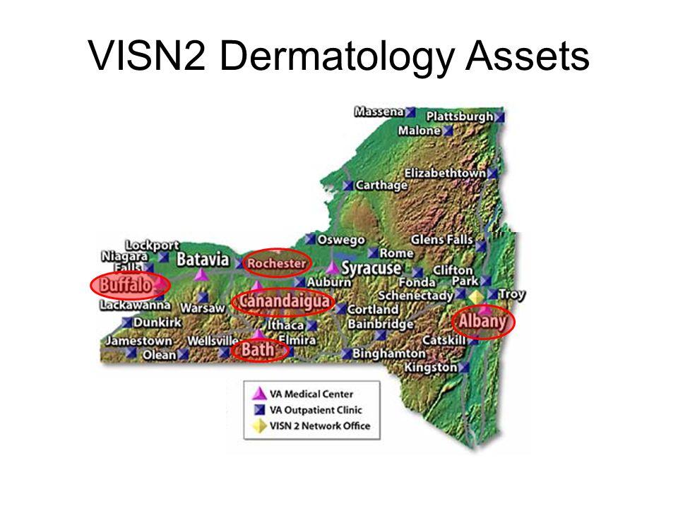 VISN2 Dermatology Assets