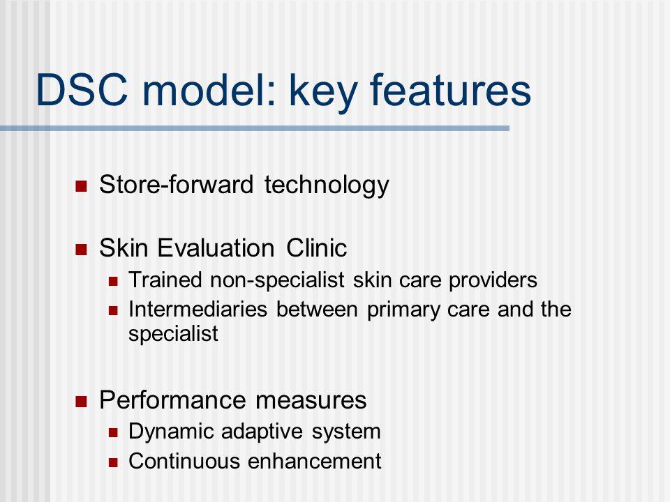 DSC model: key features