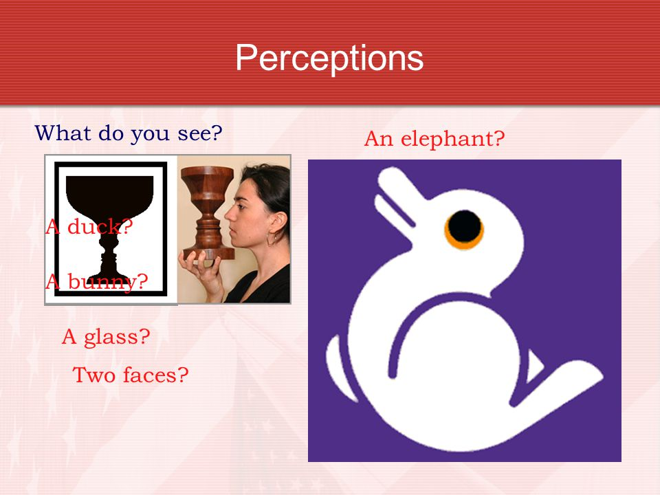 Perceptions What do you see An elephant A cleverly painted hand