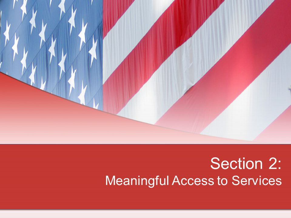 Section 2: Meaningful Access to Services