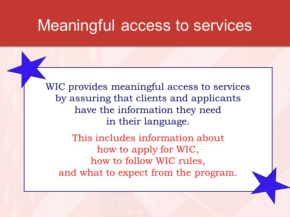 Meaningful access to services