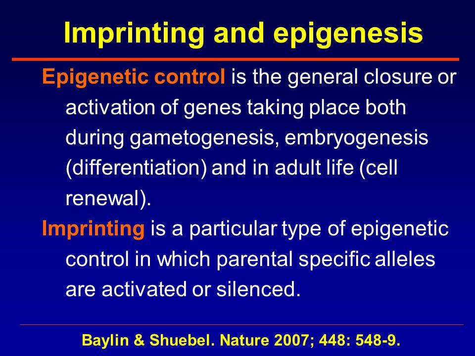 Imprinting and epigenesis