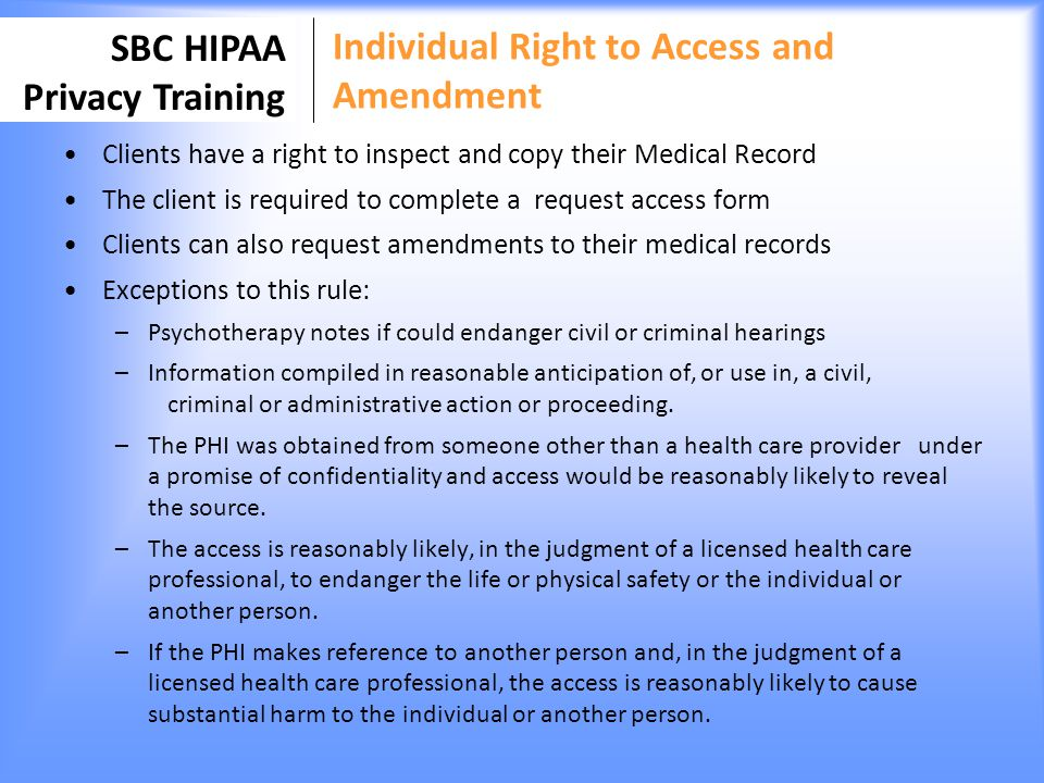 Individual Right to Access and Amendment