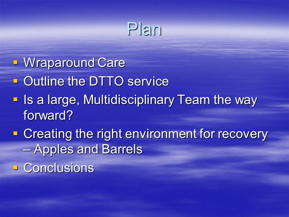 Plan Wraparound Care Outline the DTTO service