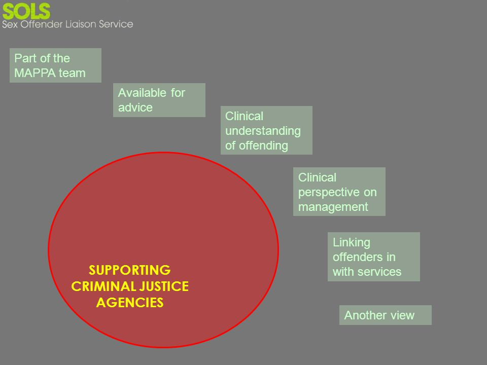 SUPPORTING CRIMINAL JUSTICE AGENCIES