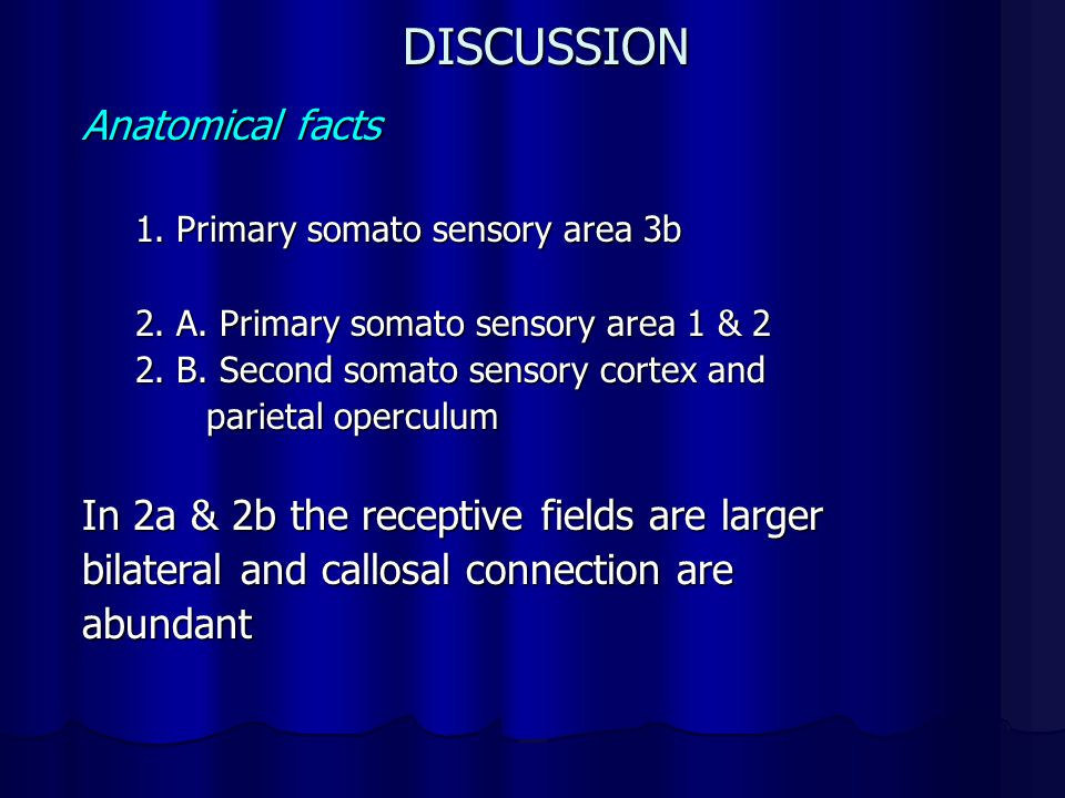 DISCUSSION Anatomical facts In 2a & 2b the receptive fields are larger