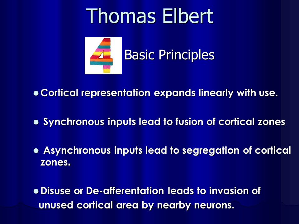 Thomas Elbert Basic Principles
