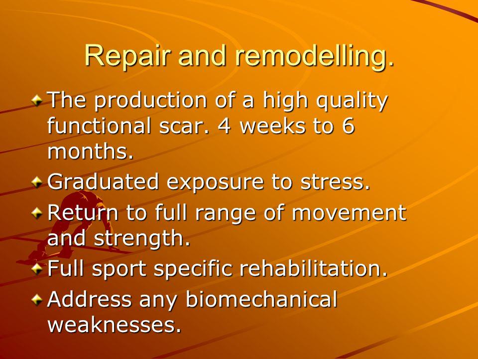Repair and remodelling.
