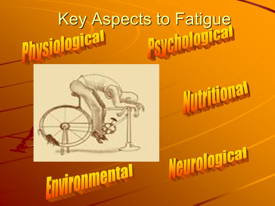 Key Aspects to Fatigue Psychological Physiological Nutritional