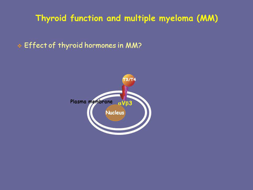 Thyroid function and multiple myeloma (MM)