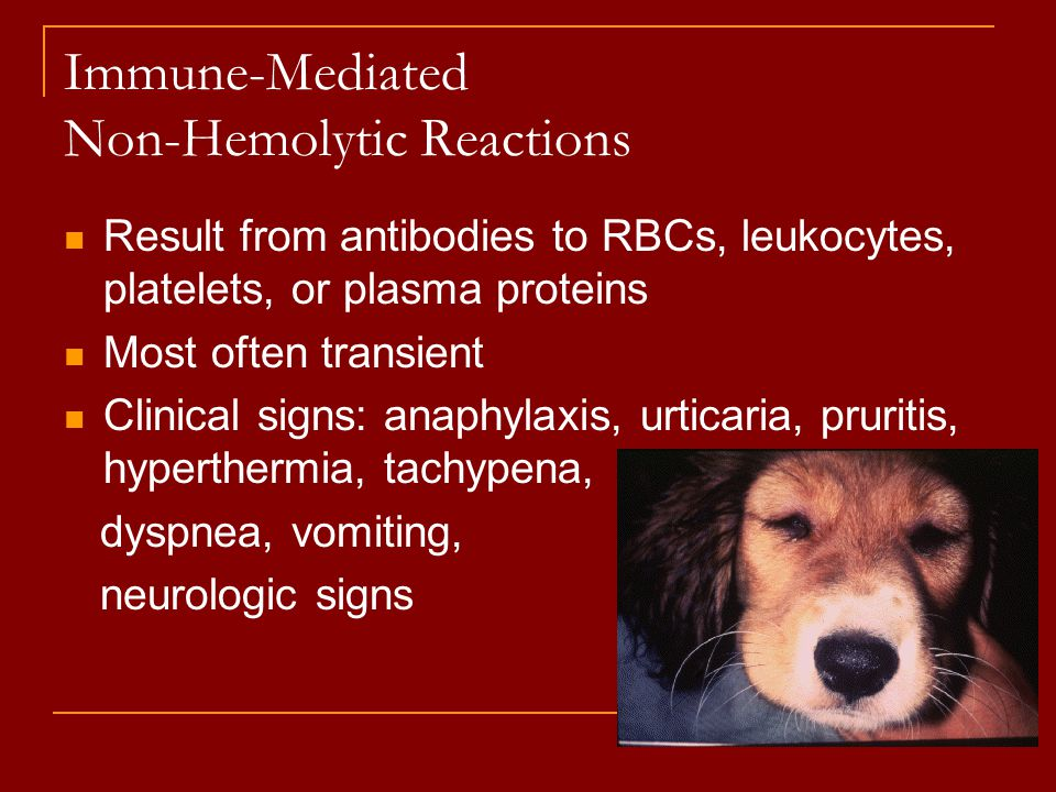 Immune-Mediated Non-Hemolytic Reactions