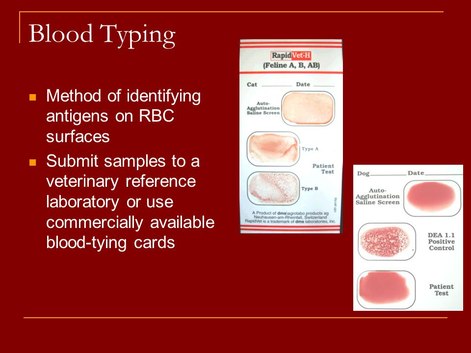 Blood Typing Method of identifying antigens on RBC surfaces