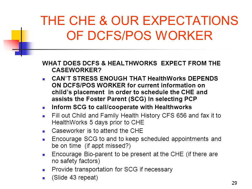 THE CHE & OUR EXPECTATIONS OF DCFS/POS WORKER