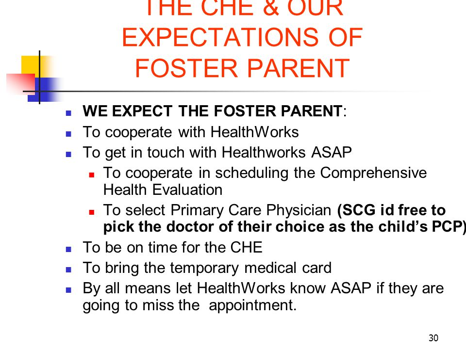 THE CHE & OUR EXPECTATIONS OF FOSTER PARENT