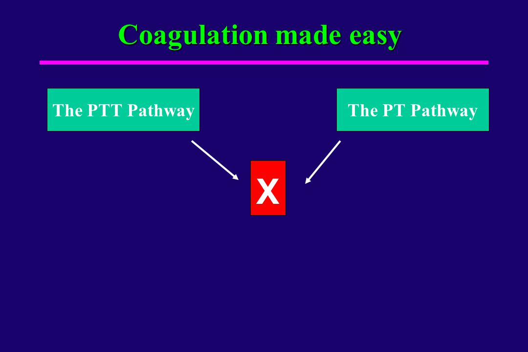Coagulation made easy The PTT Pathway The PT Pathway X