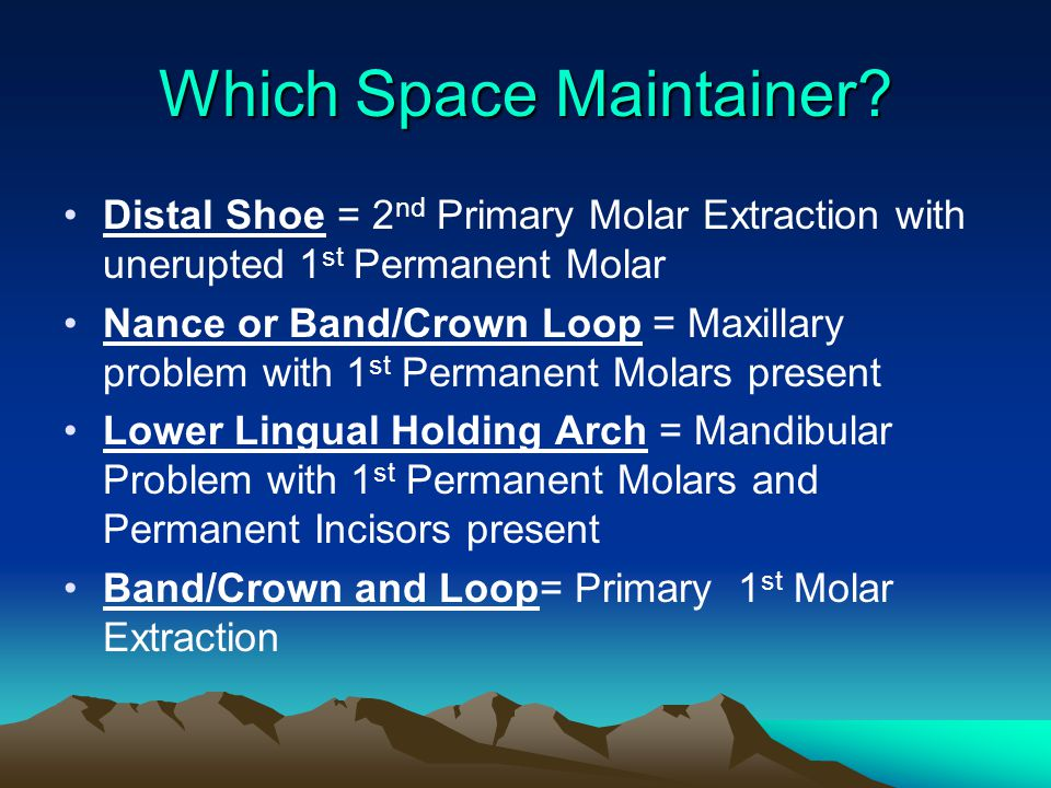 Which Space Maintainer
